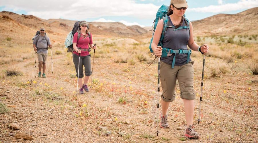 Koval 030616 1260 trekking poles in use