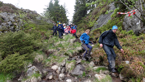 norway bergen events hiking 4and7 mountain hike dsc03393