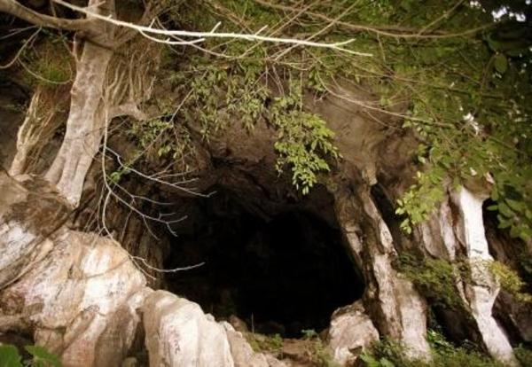 gua payong