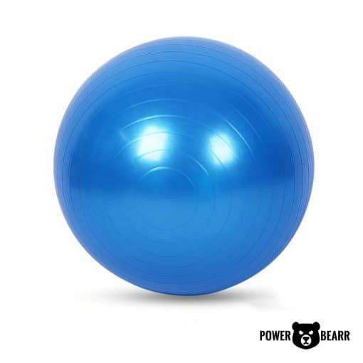 Power Bearr Gym Ball