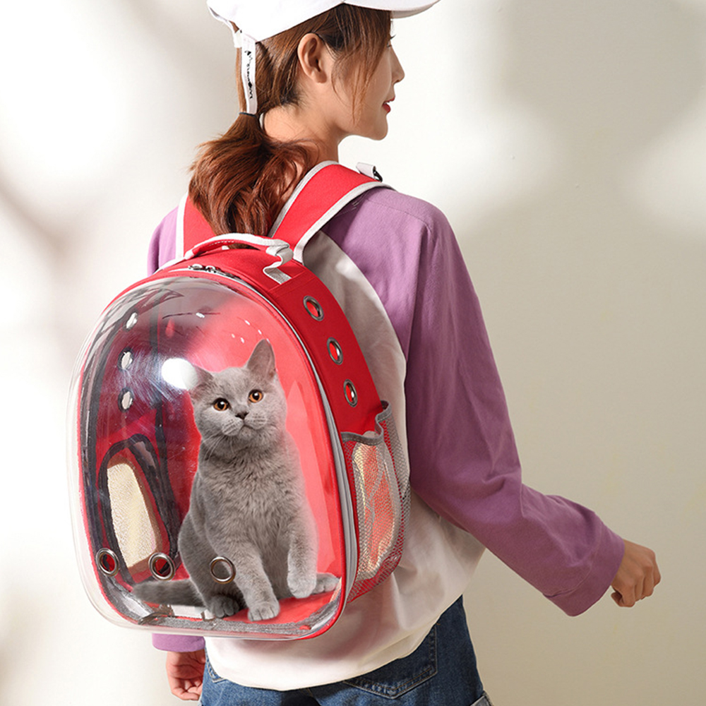 TBF Outdoor Pet Carrier Backpack with Breathing Hole, Lightweight, Transparent, Pet, Pet carrier, Adjustable