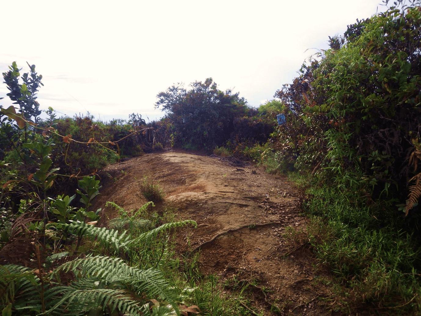 Gunung Suku