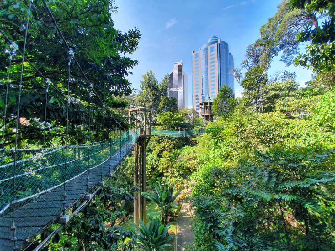Top Five Hiking Trails in Selangor